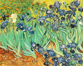 VanGogh - Irises